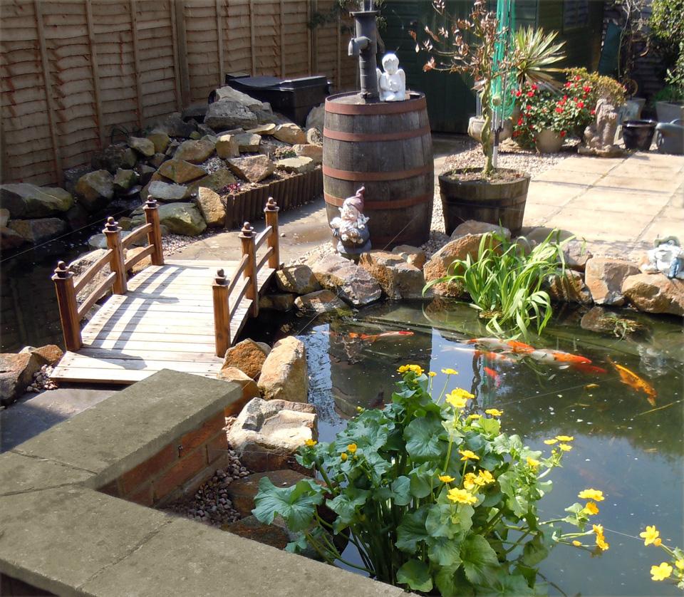 Water wizard garden ponds water features landscaping for Garden pool builders
