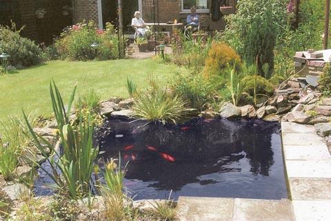 Water Wizard Garden Ponds Water Features Landscaping