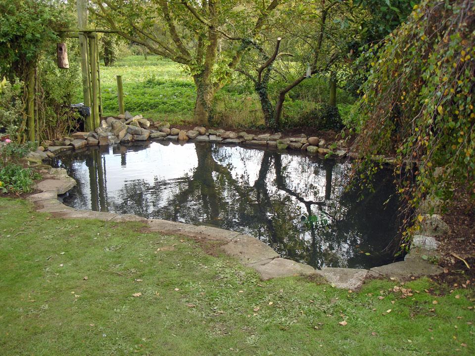 Water wizard garden ponds water features landscaping for Garden pond edging stones